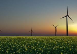 Situación de las energías renovables en el mundo